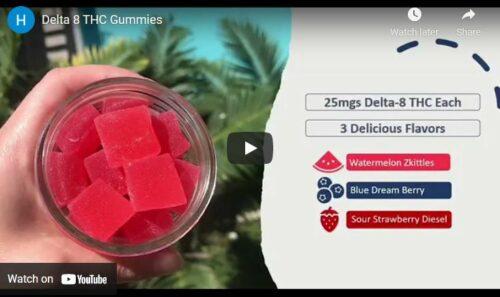 Delta-8 THC Gummies | Blue Dream Berry - 25 Pack